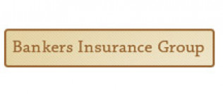 Image result for bankers insurance group logo